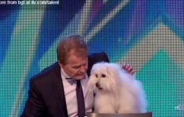الكلبة التي أبهرت العالم. شاركت في برنامج مواهب بريطانية وتحدثت إلى لجنة التحكيم والجماهير + فيديو