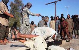 """""""داعش"""" يعدم 17 شخصا بينهم عناصر من القوات السورية في مدينة تدمر الأثرية"""