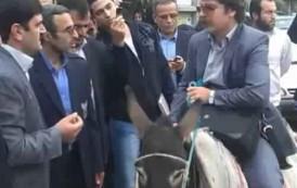 إيراني بدل طوموبيلتو بحمارة باش يحتج على السلطات (صورة)
