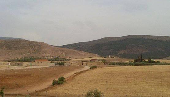 واش تدخل المغرب باش يرجع لمغاربة لي طلبو اللجوء. الجزائر تؤكد أن إتفاق مغربي جزائري أعاد العائلات إلى منازلها