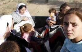 داعش تبيع جميلات الايزيديات في أسواق النخاسة وهن عاريات