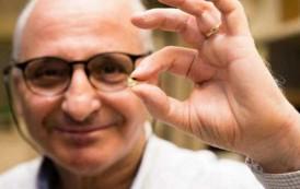 فريق علمي بقيادة عالم مغربي يخترع شريحة تشحن بطارية الهاتف في عشر دقائق