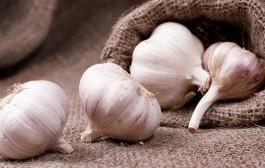الثوم مضاد للكوليسترول