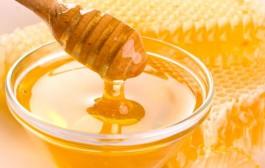العسل يقتل الفطريات