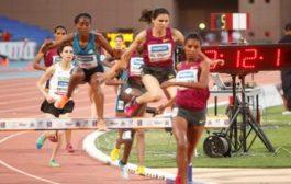 أحيزون : أن غياب الميداليات في أولمبياد ريو لم يكن مطابقا لطموحات الجامعة