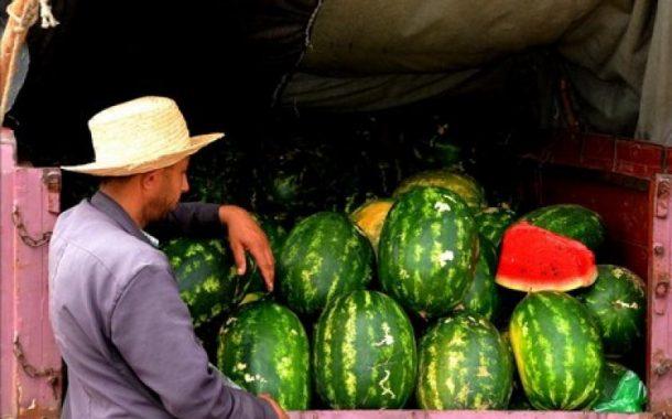 بلاغ ل «حماية» دلاح شيشاوة يلصق شبهة التسميد باستخدام البراز بمنتجات فلاحية أخرى