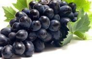 دراسة. عصير العنب الاحمر افضل محارب للسرطان