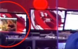 """فضيحة تهز قناة """"بي بي سي"""".. مشهد إباحي على شاشة يخلق ضجة كبيرة (فيديو)"""