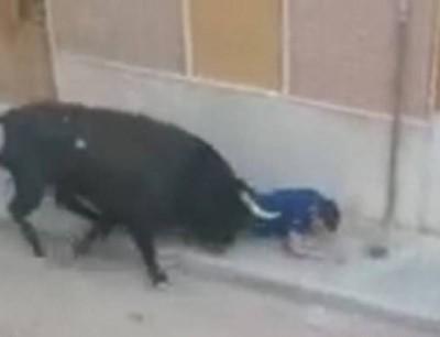 من لحيتو لقم ليه. بالفيديو مقتل مشارك فمهرجان الثيران على يد ثور هائج