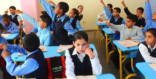 الحكومة لن تتراجع عن مجانية التعليم: فيديو